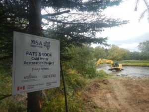 Pat's Brook - Enhancement Work in Progress